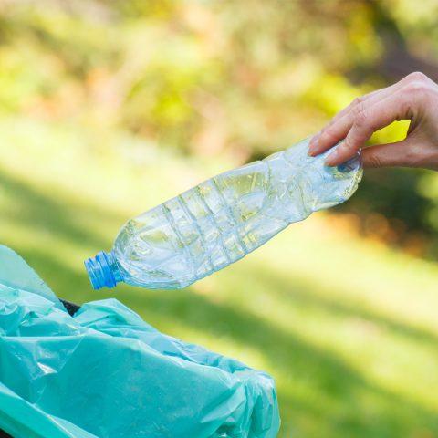 productos amigables con el medioambiente